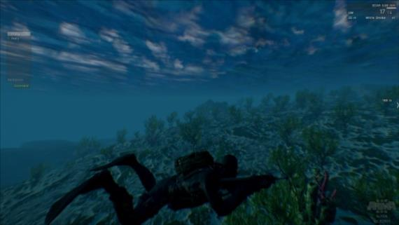Pod morskou hladinou